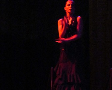 Flamenco in the Dark